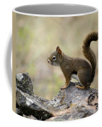 Brown Squirrel In Spokane Coffee Mug