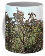 Buchorn Cholla Coffee Mug