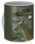 Buck 9246 4037 2 Coffee Mug