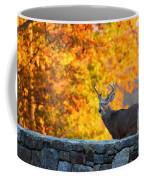 Buck In The Fall 07 Coffee Mug