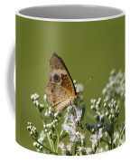 Buckeye Butterfly And Lesser Snakeroot Wildflowers Coffee Mug