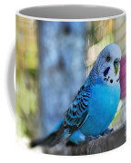 Budgerigar - Parakeet Coffee Mug