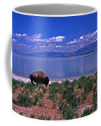 Buffalo And The Great Salt Lake Coffee Mug