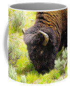 Buffalo Grazing Coffee Mug
