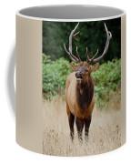 Bugler Coffee Mug