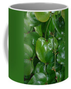 Bull Briar - Cat Briar - Smilax Coffee Mug