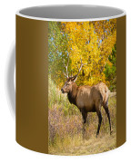 Bull Elk Autum Portrait Coffee Mug
