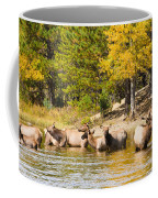 Bull Elk Watching Over Herd 5 Coffee Mug