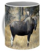 Bull Moose, Peter Lougheed Provincial Coffee Mug