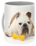 Bulldog With Plastic Chew Toy Coffee Mug