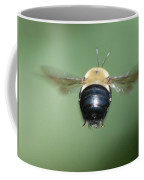 Bumble Bee 3 Coffee Mug