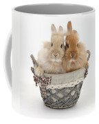 Bunnies A Basket Coffee Mug