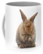 Bunny Grooming Coffee Mug