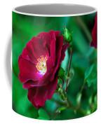 Burgundy Iceberg Rose Coffee Mug