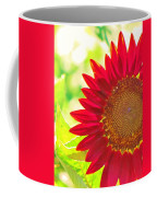 Burgundy Sunflower Coffee Mug