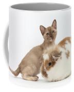 Burmese Kitten And Rabbit Coffee Mug