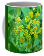 Burst Of Flowers Coffee Mug
