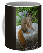 Bushy Tail II Coffee Mug