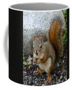 Bushy Tail Coffee Mug