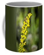 Busy Bee On Yellow Wildflower Coffee Mug
