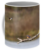 Busy Bluebirds - Three Overlooking The Lake Coffee Mug