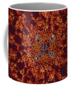 Buttercup Vascular System Coffee Mug by M I Walker
