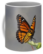 Butterfly - Sitting On The Green Coffee Mug