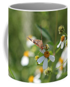 Butterfly 16 Coffee Mug