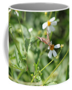 Butterfly 8 Coffee Mug
