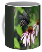 Butterfly And Coine Flower Coffee Mug