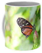 Butterfly At Rest Coffee Mug