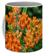 Butterfly Milkweed Coffee Mug