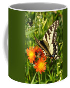 Butterfly On Orange Flowers Coffee Mug