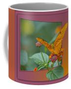 Butterfly Orange 16 By 20 Coffee Mug