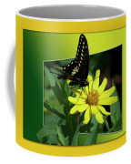 Butterfly Swallowtail 01 16 By 20 Coffee Mug