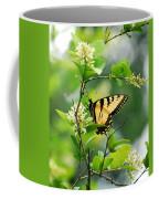 Butterfly Tiger Swallow Coffee Mug