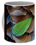 Butterfly Wing Scale Sem Coffee Mug