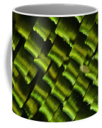 Butterfly Wing Scales Coffee Mug