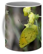 Butterfly - Yellow Sulphur On Yellow Coffee Mug