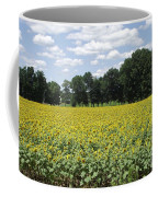 Buttonwood Farm 2 Coffee Mug