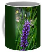 Buzzing Hyssop Coffee Mug