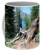 By Jenny Lake Coffee Mug