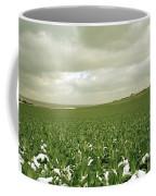 Kent In England Coffee Mug