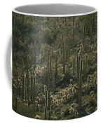 Cacti Near Tucson, Arizona Coffee Mug