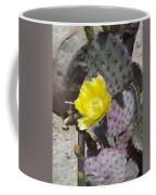 Cactus Flower 2 Coffee Mug by Snake Jagger