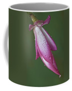Cactus Flower Drops Coffee Mug