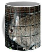 Caged Rabbit Coffee Mug