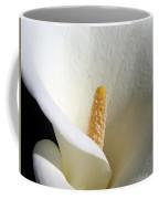 Cala Curve Coffee Mug
