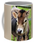Calf Closeup Coffee Mug