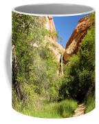 Calf Creek Falls Canyon Coffee Mug